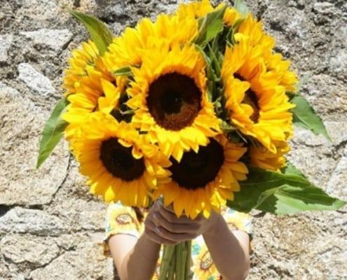 Flower Subscriptions Ireland